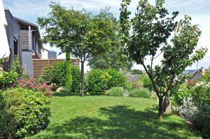 Jardin anglais paysagiste concepteur Essonne Sophie Durin
